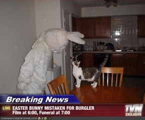 Breaking News - EASTER BUNNY MISTAKEN FOR BURGLER Film at 6:00, Funeral at 7:00