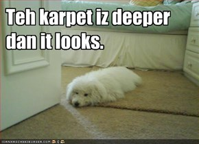 Teh karpet iz deeper dan it looks.