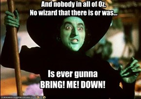 And nobody in all of Oz,  No wizard that there is or was...