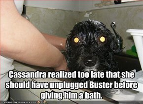 Cassandra realized too late that she should have unplugged Buster before giving him a bath.