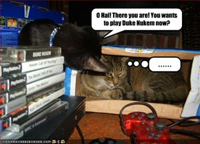 O Hai! There you are! You wants to play Duke Nukem now?
