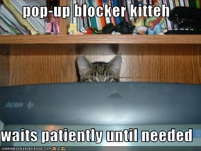 pop-up blocker kitteh  waits patiently until needed