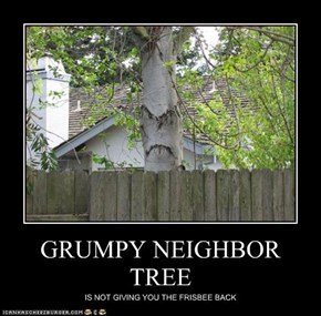 GRUMPY NEIGHBOR TREE