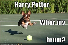 Harry Potter, Wher my brum?