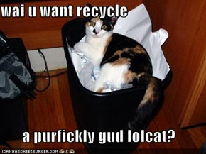wai u want recycle  a purfickly gud lolcat?