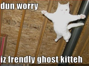 dun worry  iz frendly ghost kitteh
