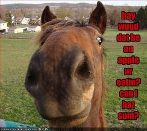 hay wuud dat be an apple ur eatin? can i haz sum?