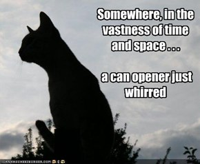 Somewhere, in the vastness of time and space . . .   a can opener just whirred