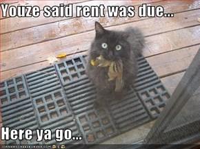 Youze said rent was due...  Here ya go...