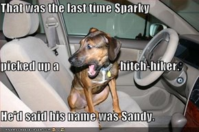 That was the last time Sparky picked up a                          hitch-hiker. He'd said his name was Sandy.