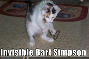 Invisible Bart Simpson