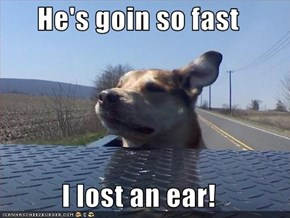 He's goin so fast  I lost an ear!