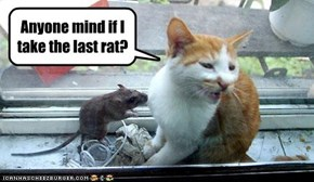 Anyone mind if I take the last rat?