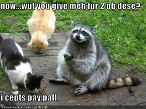 now...wut you give meh fur 2 ob dese?  i cepts pay pall