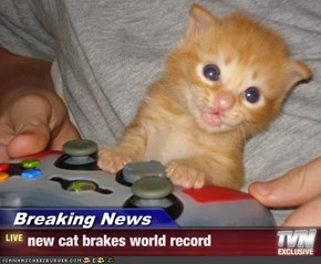 Breaking News - new cat brakes world record