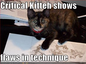 Critical Kitteh shows  flaws in technique