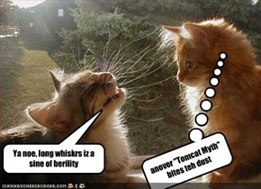 Ya noe, long whiskrs iz a sine of berility