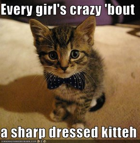 Every girl's crazy 'bout  a sharp dressed kitteh