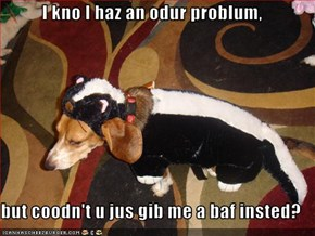 I kno I haz an odur problum,  but coodn't u jus gib me a baf insted?