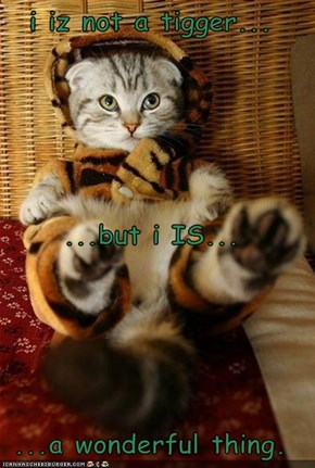 i iz not a tigger... ...but i IS... ...a wonderful thing.