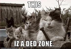 THIS  IZ A DED ZONE.