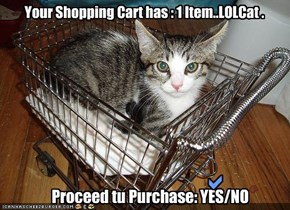 Your Shopping Cart has : 1 Item..LOLCat .