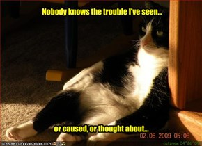 Nobody knows the trouble I've seen...