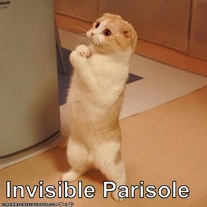 Invisible Parisole