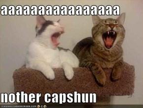 aaaaaaaaaaaaaaaa  nother capshun