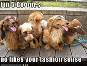 I in 5 Goggies  no likes your fashion sense