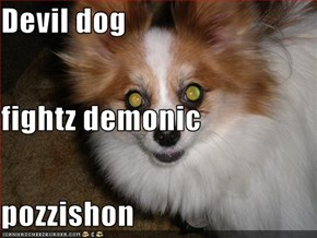 Devil dog fightz demonic  pozzishon