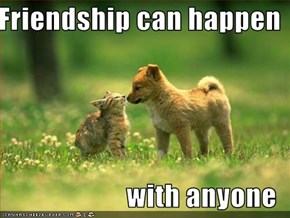 Friendship can happen  with anyone