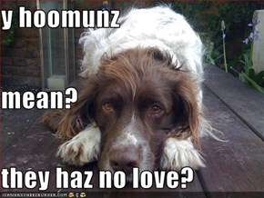 y hoomunz mean? they haz no love?