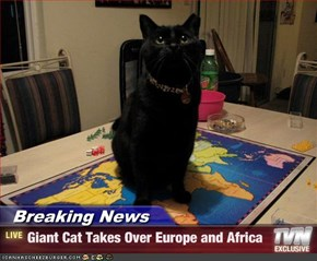 Breaking News - Giant Cat Takes Over Europe and Africa