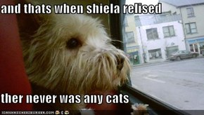 and thats when shiela relised  ther never was any cats