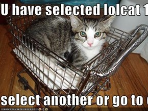 U have selected lolcat 100  select another or go to checkout