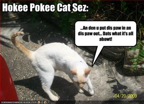 Hokee Pokee Cat Sez: