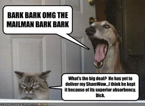 BARK BARK OMG THE MAILMAN BARK BARK