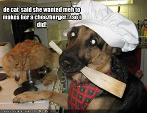 de cat  said she wanted meh to makes her a cheezburger.....so i did!