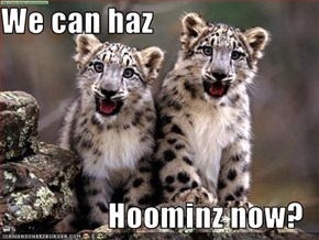 We can haz  Hoominz now?