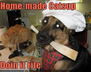 Home-made Catsup  Doin it rite