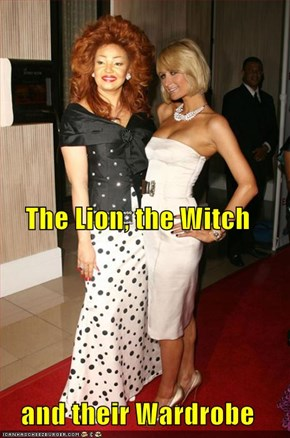 The Lion, the Witch and their Wardrobe