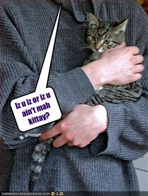 Iz u iz or iz u ain't mah kittay?