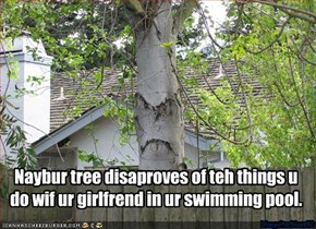 Naybur tree disaproves of teh things u do wif ur girlfrend in ur swimming pool.