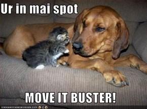 Ur in mai spot  MOVE IT BUSTER!