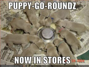 PUPPY-GO-ROUNDZ  NOW IN STORES