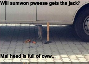 Will sumwon pweese gets tha jack?  Mai head is full of oww...