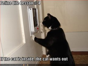 Feline Life Lesson # 4  If the cat is inside, the cat wants out
