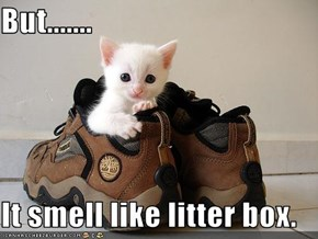 But.......  It smell like litter box.