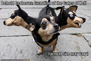 Behold Cerberus: Guardian of the Gates of Hell  (actual size may vary)